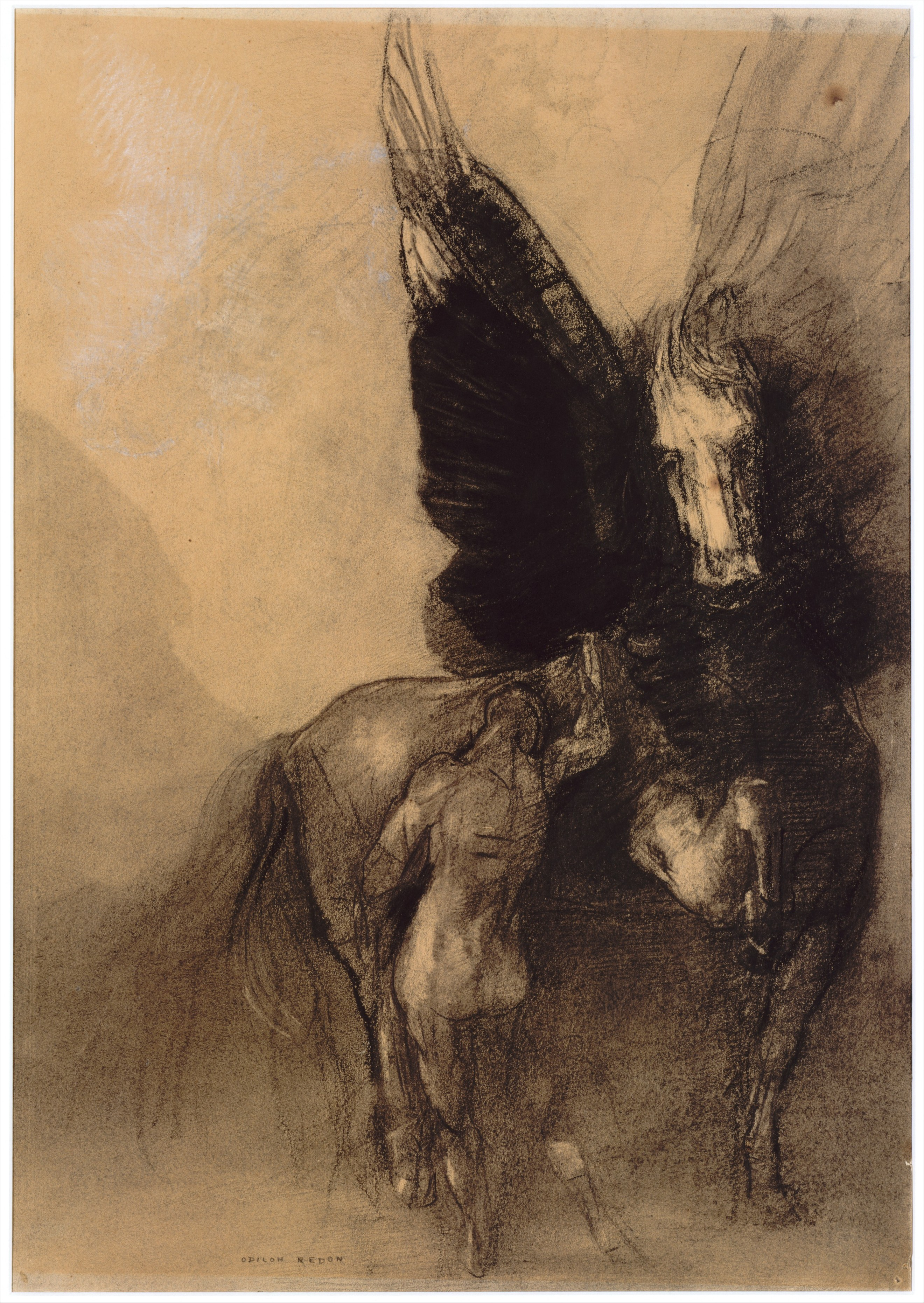 pegasus and bellerophon