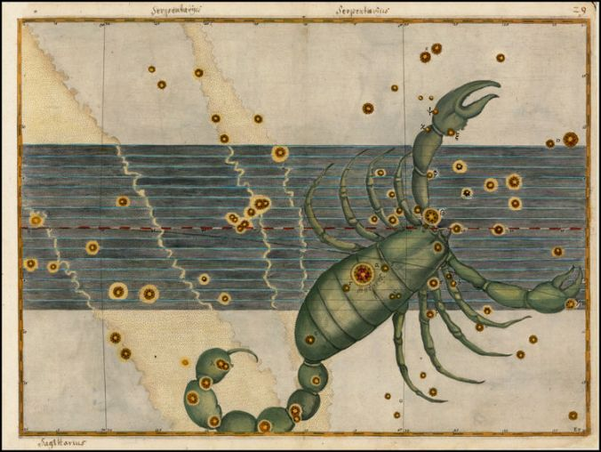 Scorpio by Bayer