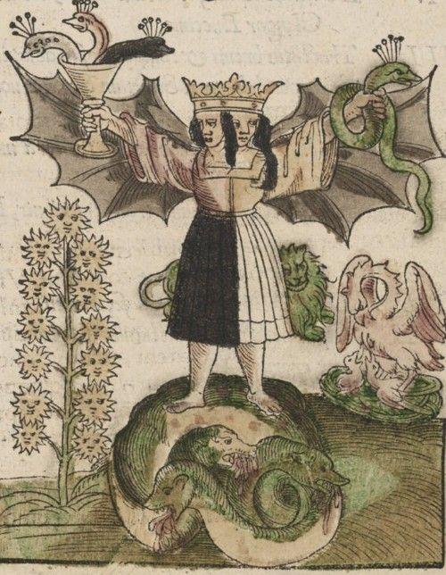 hermaphrodite from rosarium philosophorum