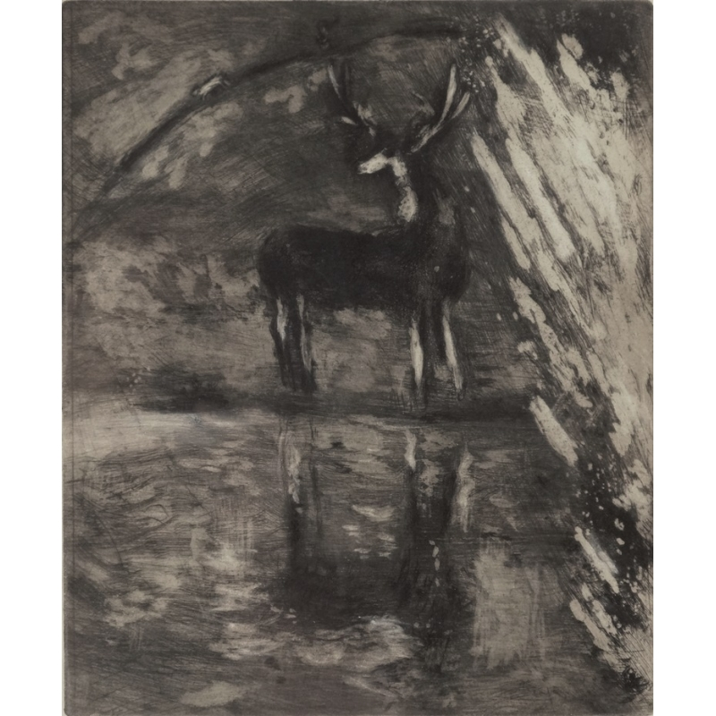 Chagall the-deer-looking-itself-in-the-water