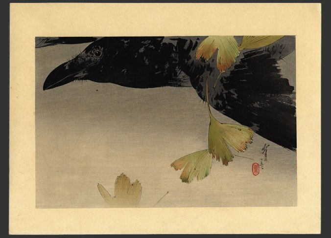 crow-in-flight-watanabe