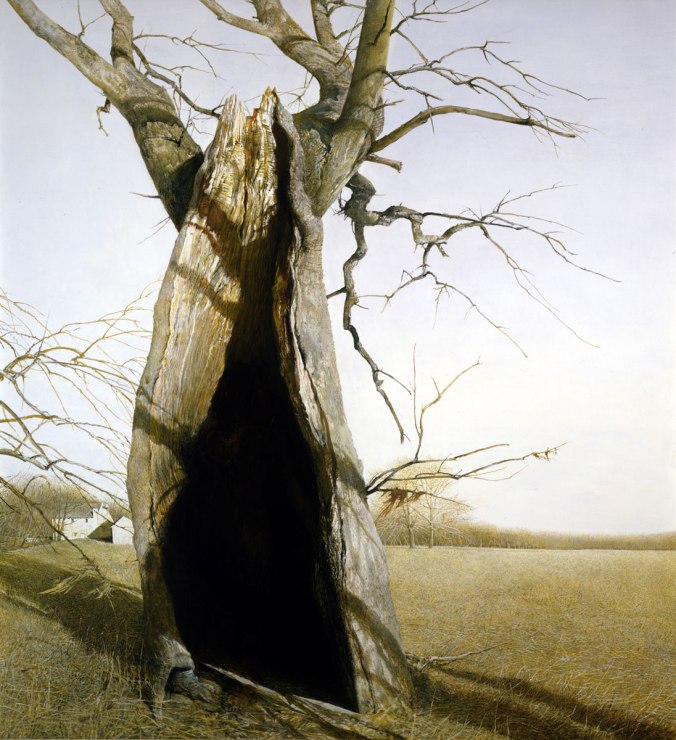 andrew wyeth dryad