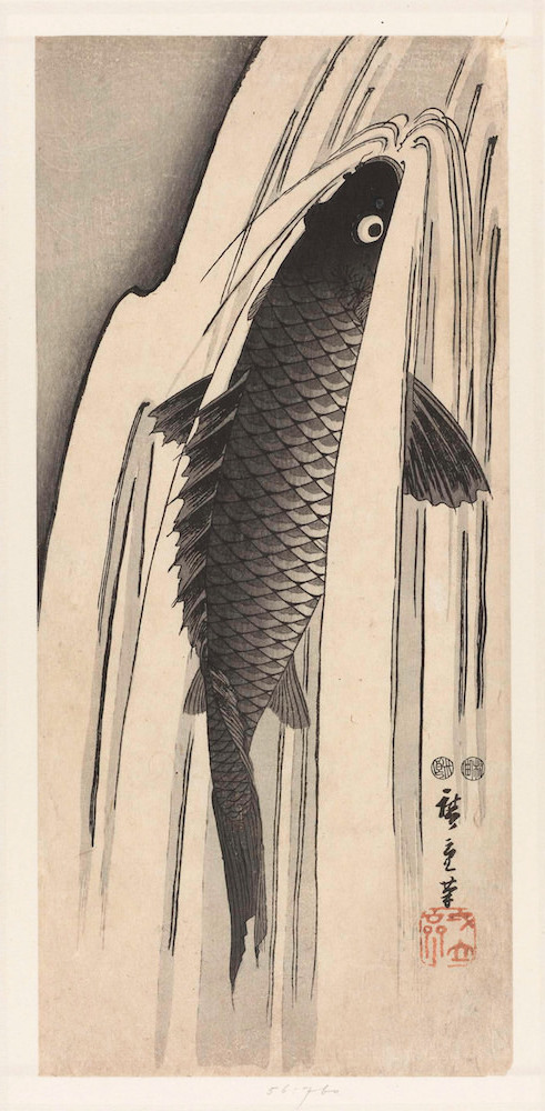 hiroshige carp swimming against waterfall